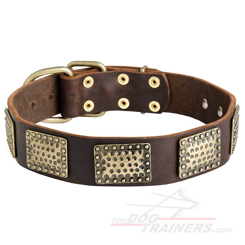 New Gorgeous War Leather Dog Collar with Vintage Look Plates - Click Image to Close