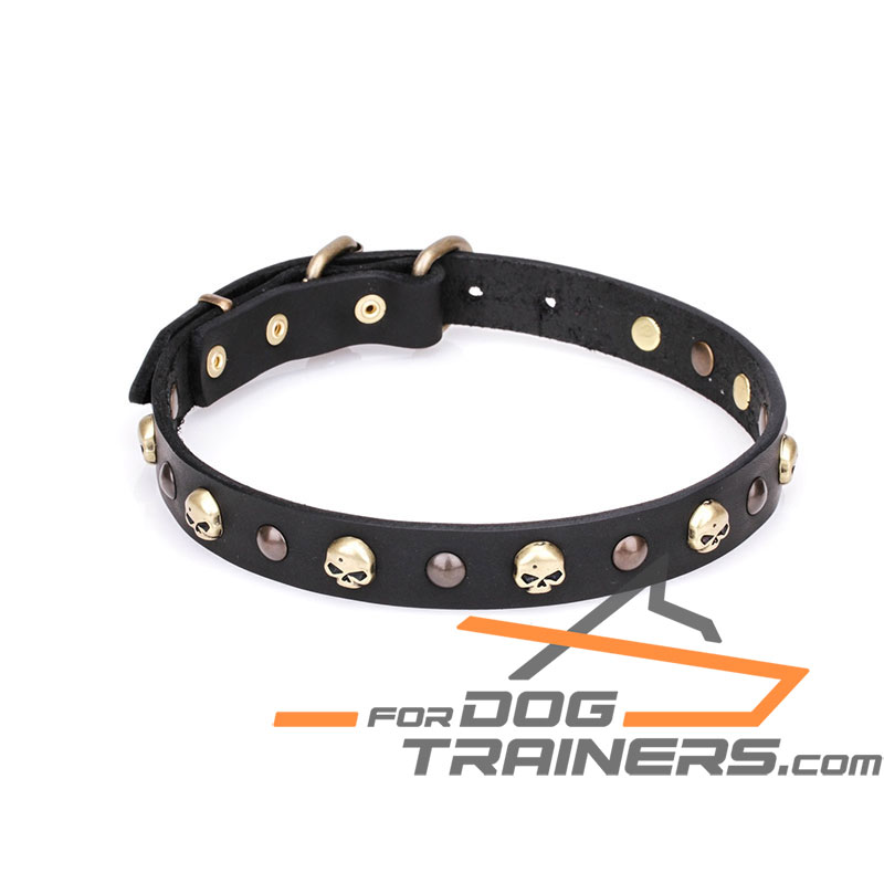"""Flibustier Charm"" 1 1/5 Inch (25 mm) Leather Dog Collar with Old Bronze Brass Plated Half-Ball Studs and Skulls - Click Image to Close"