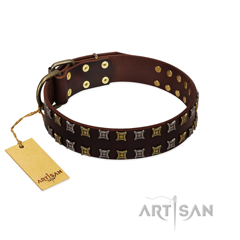 """Fido's Pleasure"" FDT Artisan Brown Leather Dog Collar with Amazing Studs - Click Image to Close"