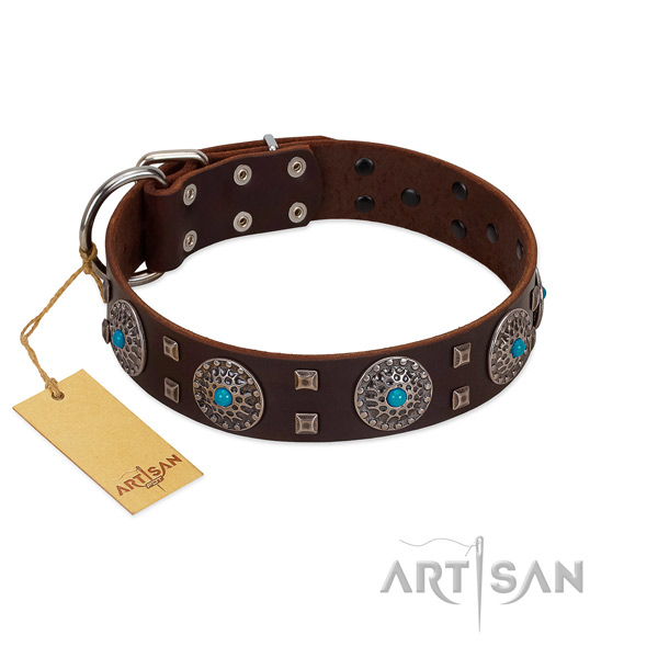 """Hypnotic Stones"" FDT Artisan Brown Leather Dog Collar with Chrome Plated Brooches and Square Studs - Click Image to Close"