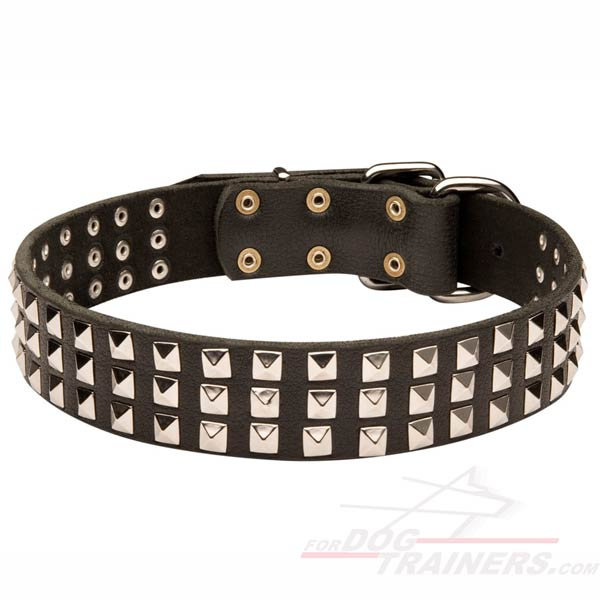 Leather Wide Dog Collar for Cane Corso