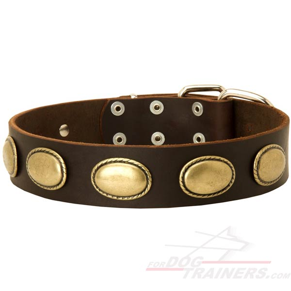 New leather dog collar