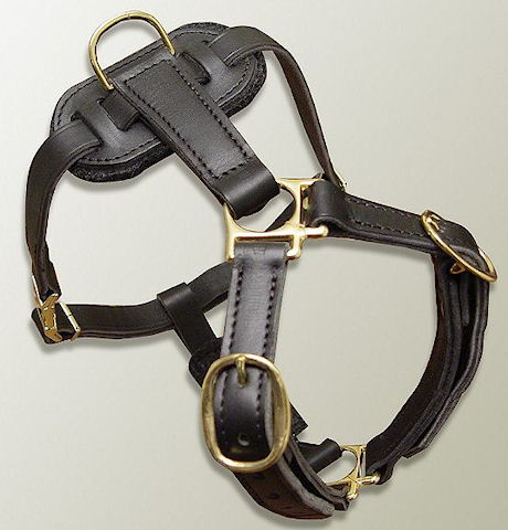 leather dog harness for all breeds