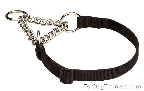 HS Nylon Martingale Dog Collar