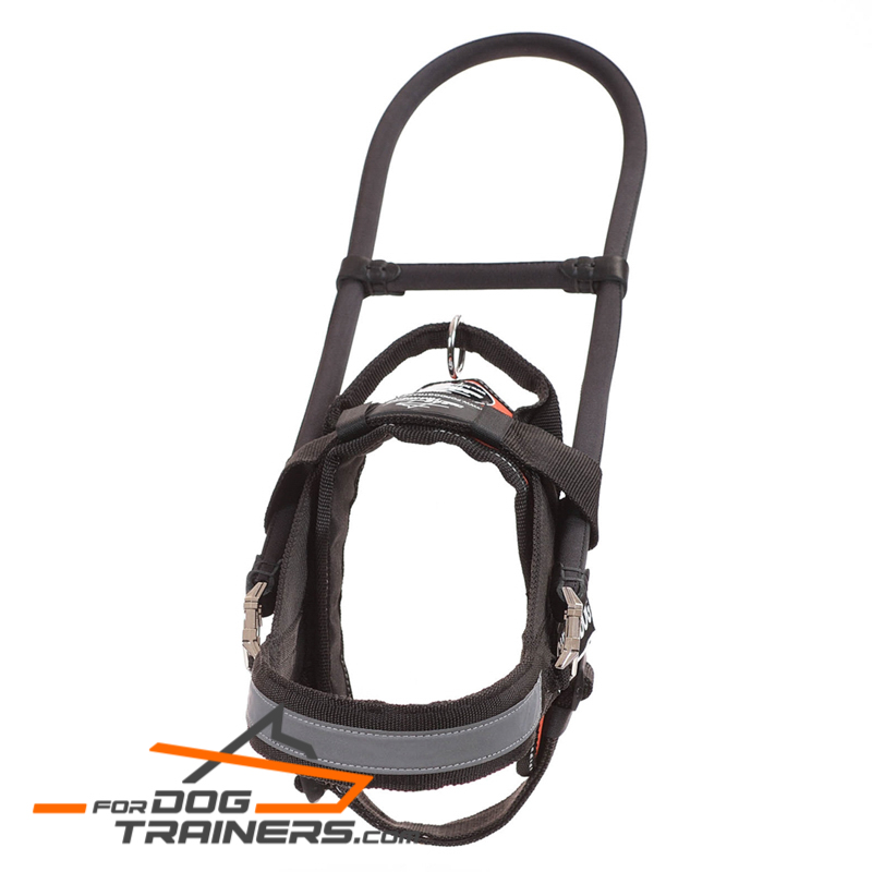 """Don't Be Afraid"" Black Nylon Harness for Guide Dog"
