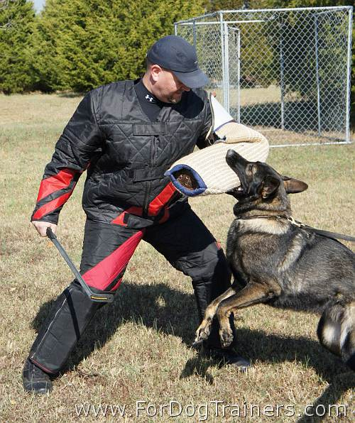 Bite Protection Sleeve - PS200 - fits Jeffrey perfectly