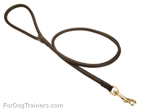Maximally comfortable leather leash for daily walks