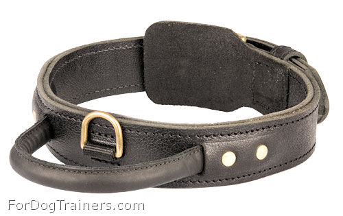 2 Ply Leather Rottweiler Collar with Handle for Agitation Training - Click Image to Close