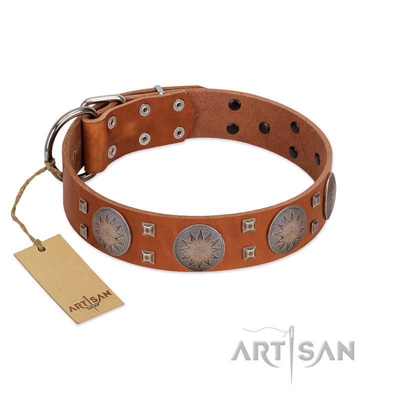 """Sun Rise Noon"" FDT Artisan Tan Leather Dog Collar with Unique Design - Click Image to Close"