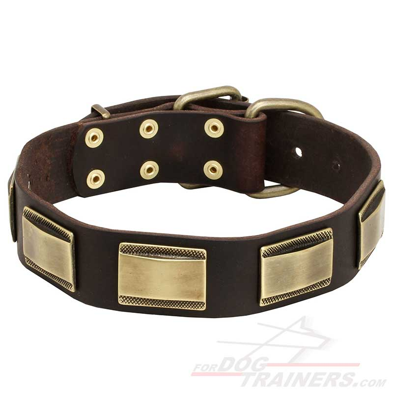 New Design Leather Dog Collar with Massive Decor - Click Image to Close