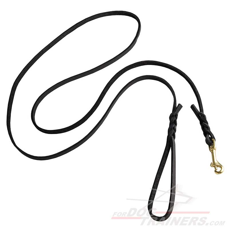 check long leather dog show leash