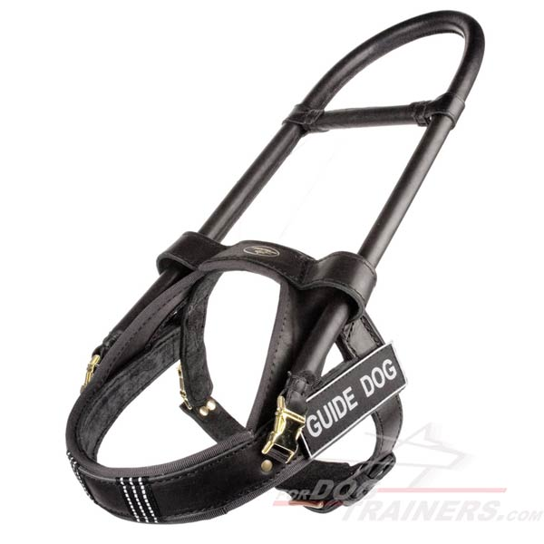 Reliable and Affordable Leather Harness