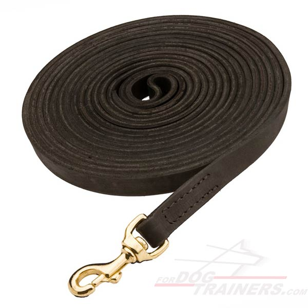 Absolutely reliable dog leash