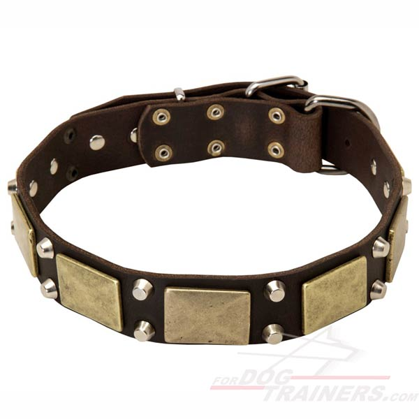 Top Quality Leather Dog Collar with Plates and Pyramids