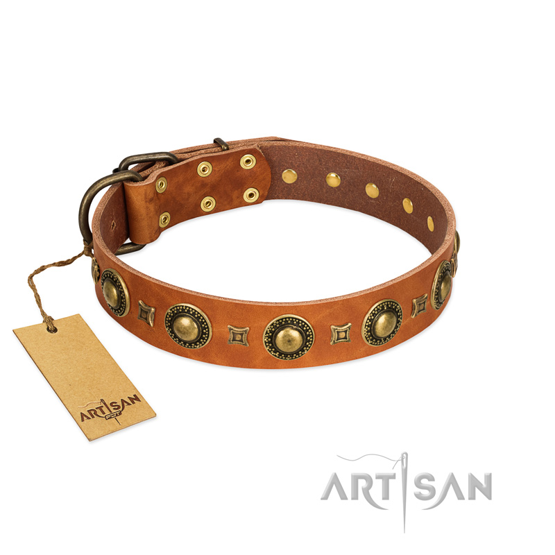 """Gorgeous Look"" FDT Artisan Beautiful Natural Leather Dog Collar with Brass Decorations"