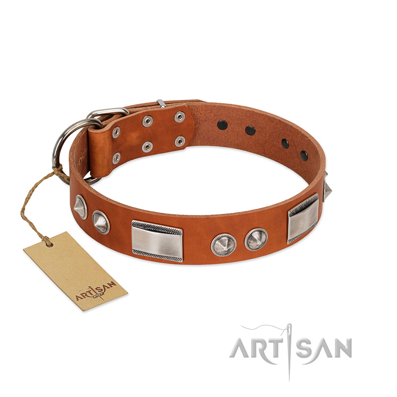 """Shining Jewelry"" FDT Artisan Stylish Natural Leather Dog Collar with Nickel Decorations"
