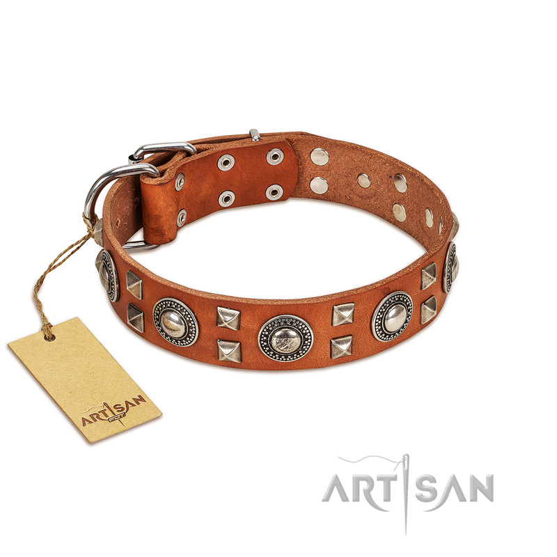 """Natural Beauty"" FDT Artisan Beautiful Natural Leather Dog Collar with Silver-Like Decorations"