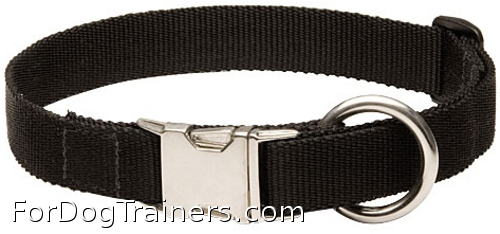 Nylon dog collar for everyday use
