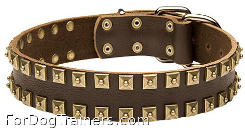 Leather handcrafted dog collar