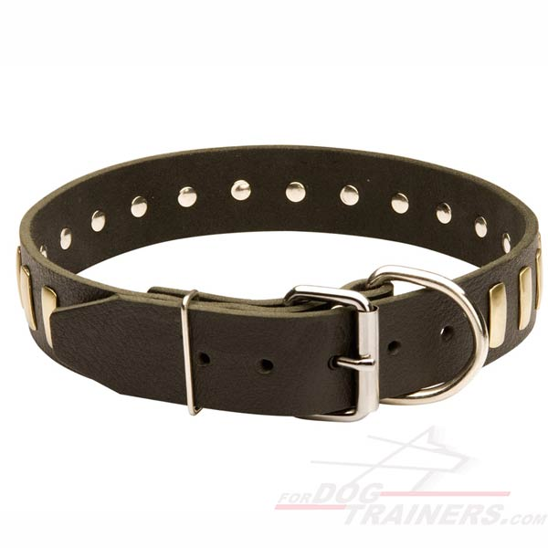 New Design Leather Collar