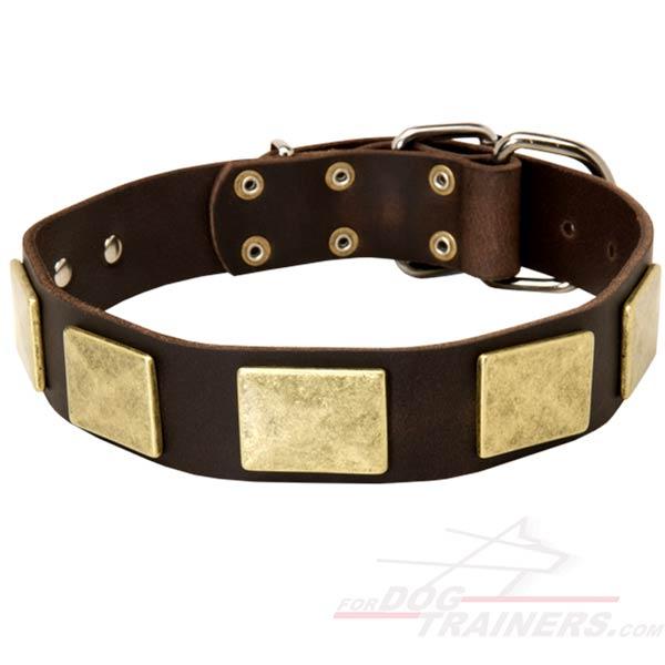 New design leather  dog collar