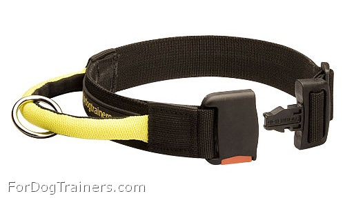 Nylon Dog Collar for Any Weather with Handle and Quick Release Buckle - Click Image to Close