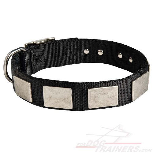 Black Nylon Dog Collar with Massive Plates - Click Image to Close