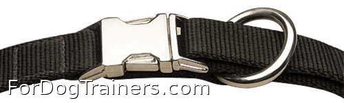 Closed buckle of nylon dog collar