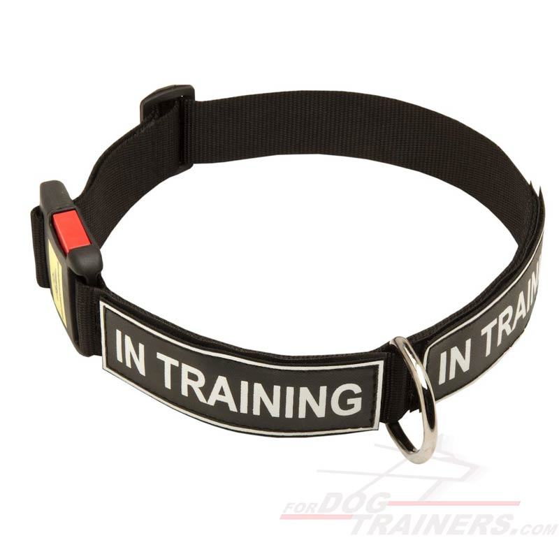 Strong All Weather Nylon Dog Collar with Patches and Quick Release Buckle - Click Image to Close