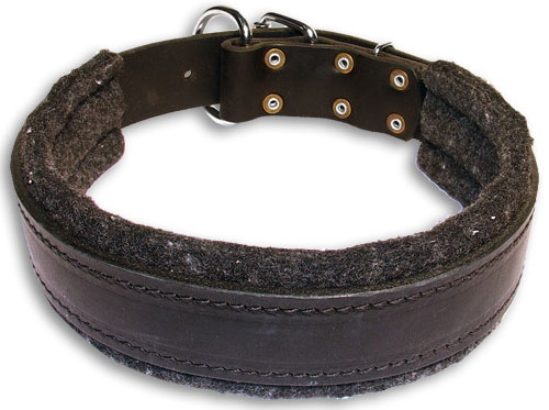Dog collar made of leather with support material for agitation work ( dog training equipment )