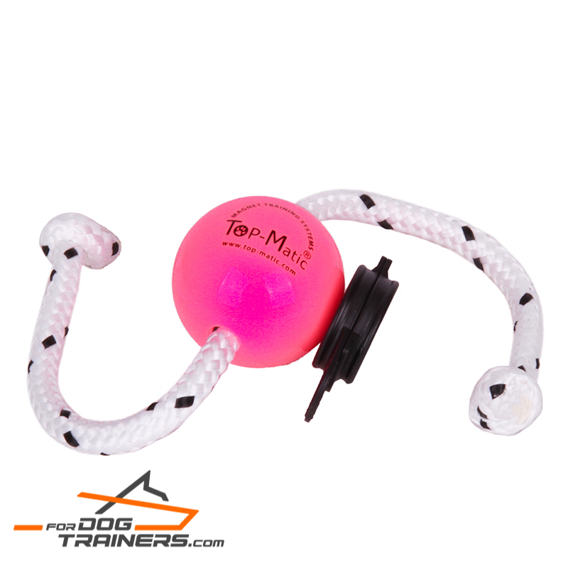 """Pink Happiness"" Magnetic Dog Ball for Professional Training"
