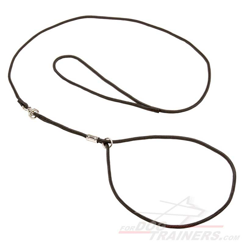 buy show dog leash