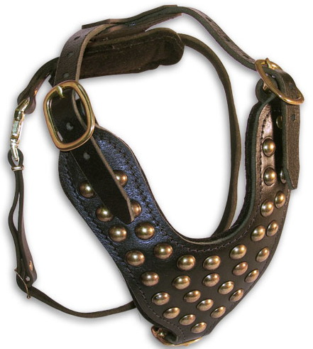 Luxury Studded Leather Dog Harness for Daily Wearing - Click Image to Close