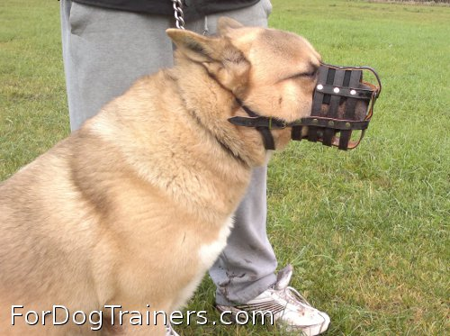 Everyday Light Weight Super Ventilation Akita muzzle perfectly suits every dog