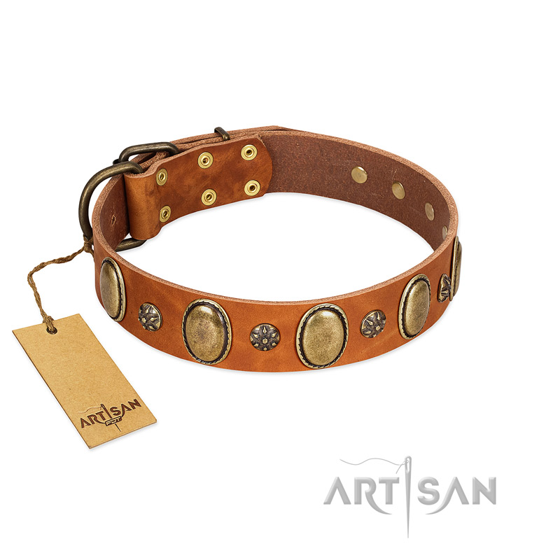 """Total Grace"" FDT Artisan Tan Leather Dog Collar with Eye-catchy Ovals and Small Studs - Click Image to Close"