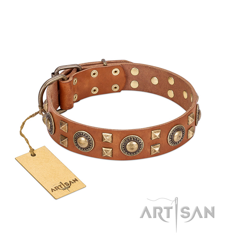 """Antique Treasure"" FDT Artisan Beautiful Tan Leather Dog Collar with Brass Decorations"