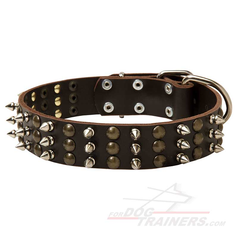 Trendy Leather Dog Collar with Mix of Studs and Spikes - Click Image to Close