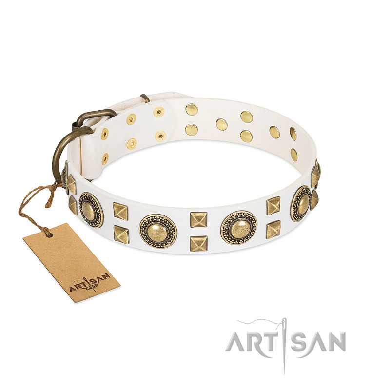 """Medieval Adornments"" FDT Artisan Gorgeous White Leather Dog Collar with Brass Decorations"