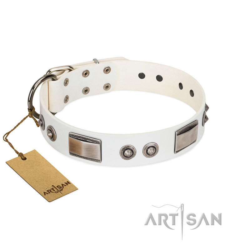 """Good-Luck Piece"" FDT Artisan White Dog Collar Adorned with Chrome Plated Stars and Plates - Click Image to Close"