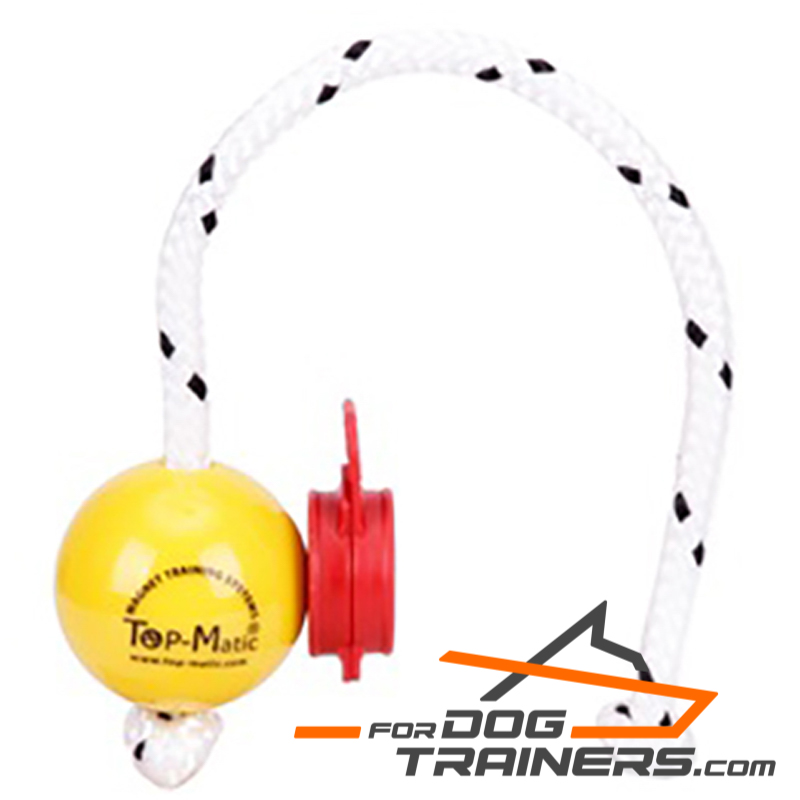 Dog Ball with Magnets for Professional Training