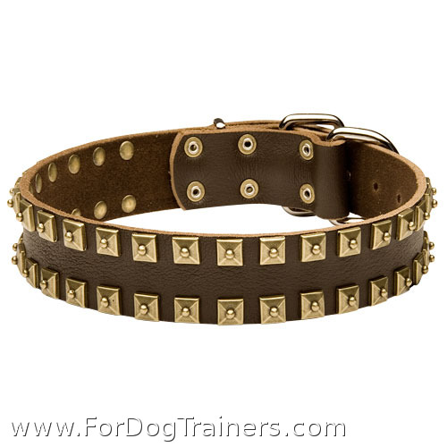 """Caterpillar"" Designer Leather Dog Collar with Square Brass Studs - Click Image to Close"