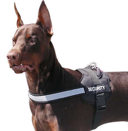 Reflective nylon dog harness with handle for Doberman