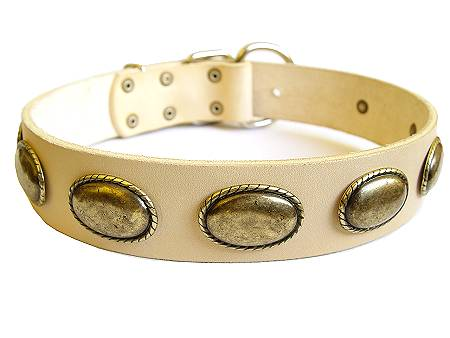 Exclusive Dog Leather Collar of Highest Quality - Click Image to Close
