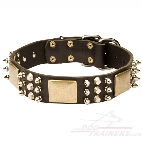 Leather Collar with spikes plates and studds