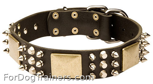leather dog collar with  spikes plates and studds - c86