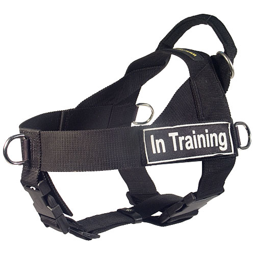 Nylon tracking dog harness
