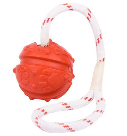 training dog toy ball on string with loop