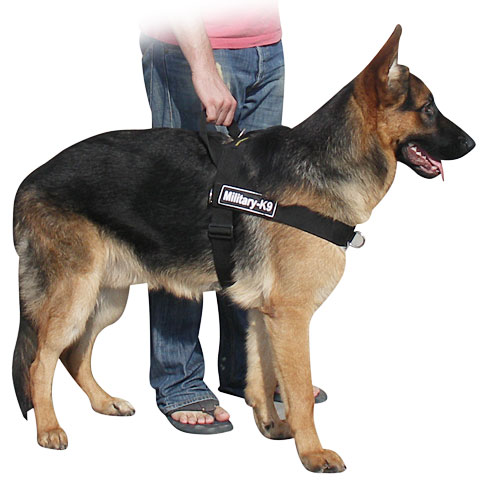 german shepherd better control dog harness