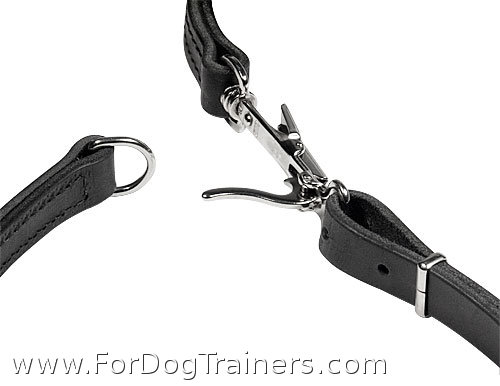 combo leash collar