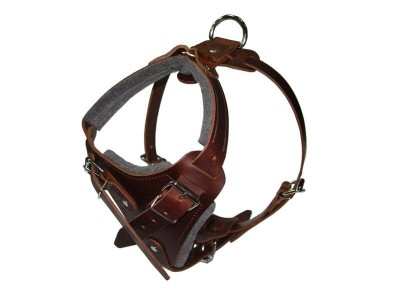leather dog harness for agitation work